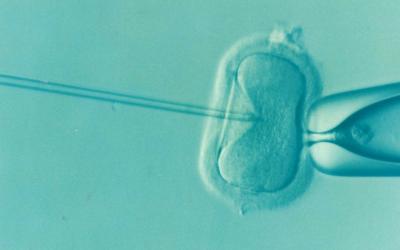 procréation médicalement assistée et sophrologie